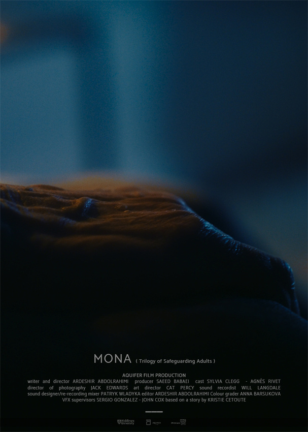 MONA( Trilogy of Safeguarding Adults ) - ©2020
