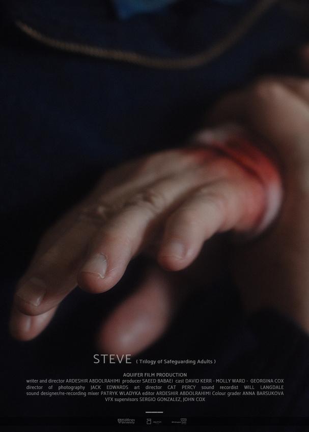STEVE( Trilogy of Safeguarding Adults ) - ©2020